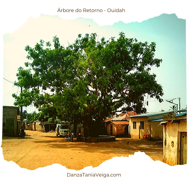 Árbore do Retorno - Ouidah